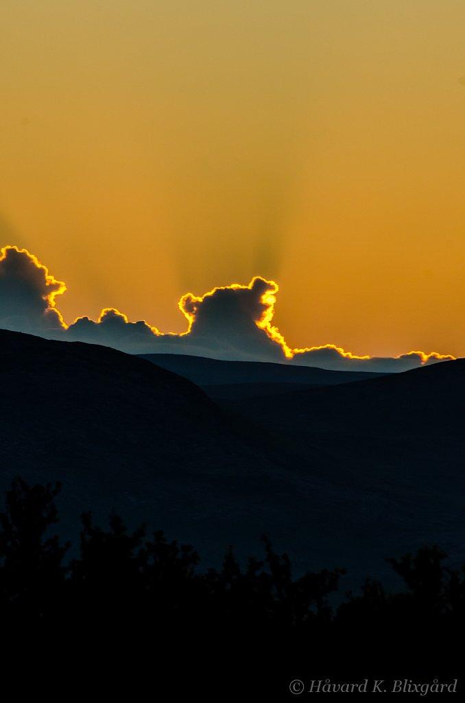 Sunset Teddybear